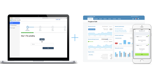 Xero and Business Importer