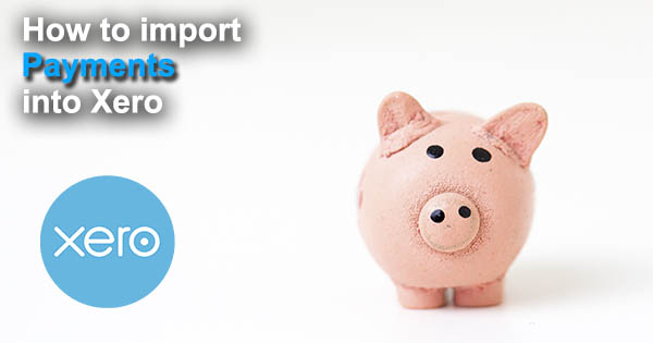 import payments to xero with business importer