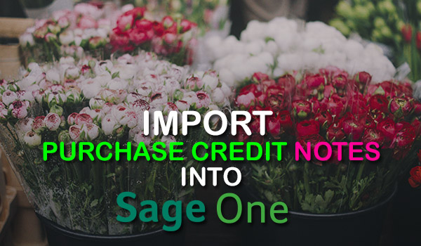 Import Purchase Credit Notes into Sage One